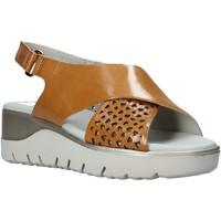 Schuhe Damen Sandalen / Sandaletten CallagHan 26508 Braun