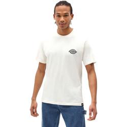 Kleidung Herren T-Shirts Dickies DK0A4XENECR1 Weiß