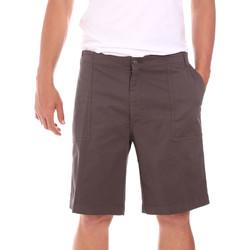 Kleidung Herren Shorts / Bermudas Colmar 0867T 8SP Braun