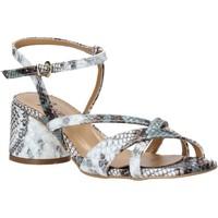 Schuhe Damen Sandalen / Sandaletten Grace Shoes 123010 Grau