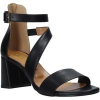 Schuhe Damen Sandalen / Sandaletten Grace Shoes 380034 Schwarz