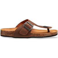 Schuhe Herren Sandalen / Sandaletten Docksteps DSM228401 Braun