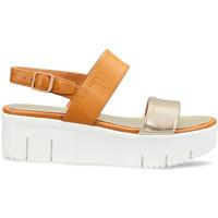 Schuhe Damen Sandalen / Sandaletten Docksteps DSW953101 Braun