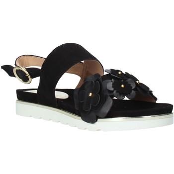 Schuhe Damen Sandalen / Sandaletten Docksteps DSE104965 Schwarz