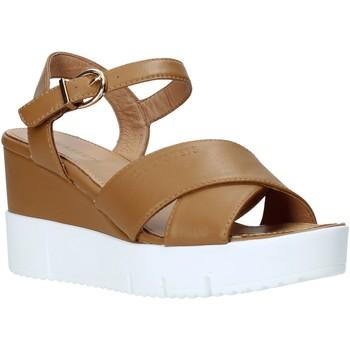 Schuhe Damen Sandalen / Sandaletten Docksteps DSW952001 Braun
