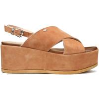 Schuhe Damen Sandalen / Sandaletten Alberto Guardiani AGW003001 Braun