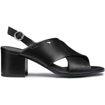 Schuhe Damen Sandalen / Sandaletten Alberto Guardiani AGW003405 Schwarz
