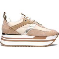 Schuhe Damen Sneaker Alberto Guardiani AGW004304 Beige