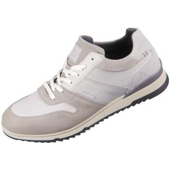 Schuhe Herren Sneaker Low Bullboxer 890K20951AWHLGSU00 Weiß, Beige
