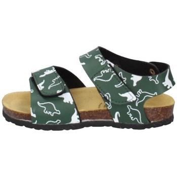 Schuhe Jungen Sandalen / Sandaletten Evoca EJ605A Grün