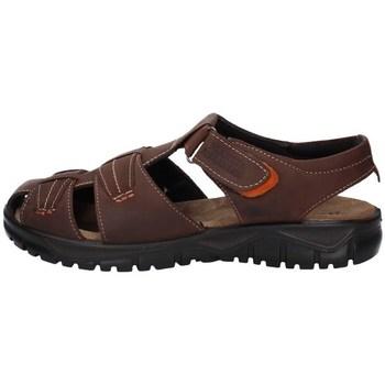 Schuhe Herren Sandalen / Sandaletten Marina Militare MM1661 BRAUN