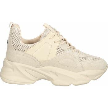 Schuhe Damen Sneaker Low Steve Madden Sneaker Beige