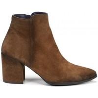 Schuhe Damen Low Boots Dorking 24 Hrs mod.8657 Other