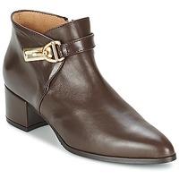 Schuhe Damen Ankle Boots Marian MARINO Braun