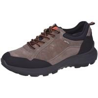 Schuhe Herren Wanderschuhe Sioux Sportschuhe Outsider Tex Schwarz Mud 39262 grau
