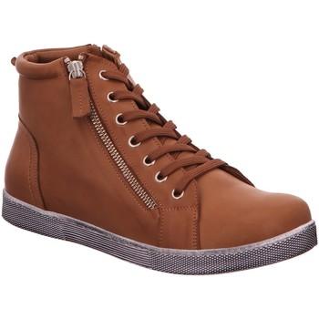 Schuhe Damen Boots Andrea Conti Stiefeletten Schnürstiefel Stiefel Boots Braun Neu 0340016-201 braun