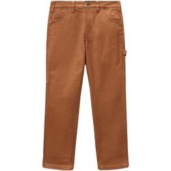 Kleidung Damen 5-Pocket-Hosen Dickies DK0A4XJHBD01 Braun
