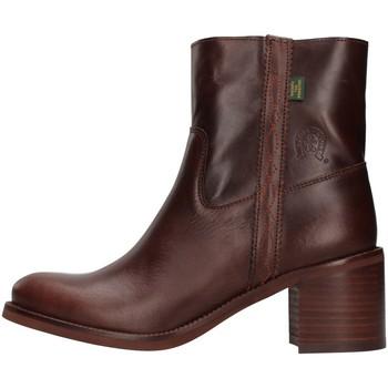 Schuhe Damen Low Boots Dakota Boots C12 BRAUN
