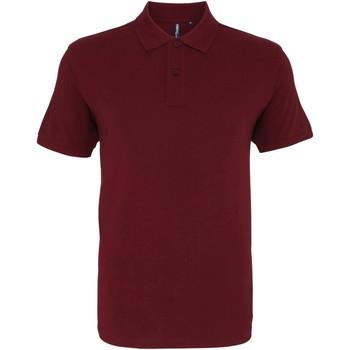 Kleidung Herren Polohemden Asquith & Fox AQ082 Burgunder