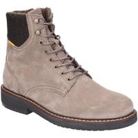 Schuhe Herren Boots Camel Active Pace Mid Lace Boot 23243276/C24 grau