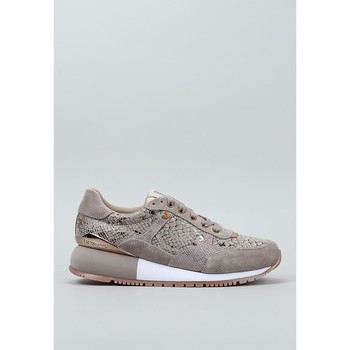 Schuhe Damen Sneaker Low Gioseppo, S.l.  Beige