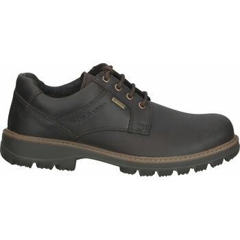 Schuhe Herren Sicherheitsschuh Pius Gabor Halbschuhe Mocca
