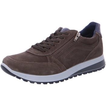 Schuhe Herren Sneaker Low Ara Schnuerschuhe 34553 11-34553-24 braun