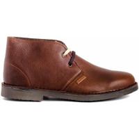 Schuhe Herren Boots Colour Feet MOGAMBO WARM Braun