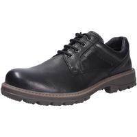 Schuhe Herren Derby-Schuhe Pius Gabor Herren Schnürschuhe schwarz