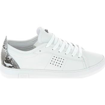Schuhe Sneaker Low TBS Pandorra Blanc Weiss