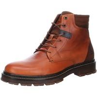 Schuhe Herren Stiefel Bullboxer Boot Tan/Cognac 456K81080ADICOSU DICO Other