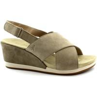 Schuhe Damen Sandalen / Sandaletten Benvado BEN-RRR-43002001-SA Beige