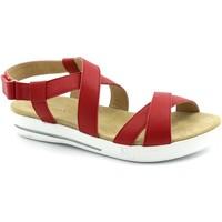 Schuhe Damen Sandalen / Sandaletten Benvado BEN-RRR-42002013-FR Rosso