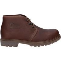 Schuhe Herren Boots Panama Jack BOTA PANAMA C50 Marr?n