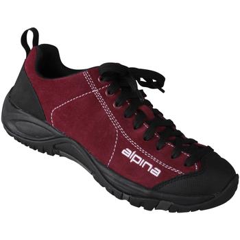 Schuhe Damen Wanderschuhe Alpina Schnürer Valea Farbe: dunkelrot dunkelrot