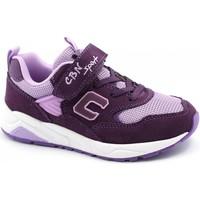 Schuhe Kinder Sneaker Low Balocchi BAL-I21-818342-VI-b Viola