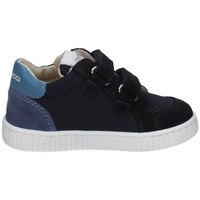 Schuhe Jungen Sneaker Low Balducci MSP3804 BLAU
