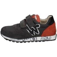Schuhe Jungen Sneaker Low Balducci FEEL1730 GRAU