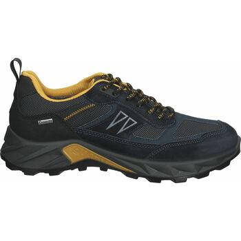 Schuhe Herren Wanderschuhe IgI&CO Sneaker Blau