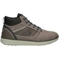 Schuhe Herren Sneaker High U.s Polo Assn YGOR002MAI22 hoch Harren TAUPE TAUPE