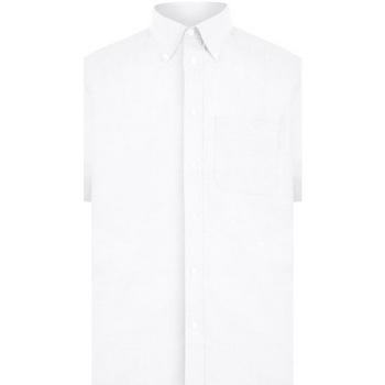 Kleidung Herren Kurzärmelige Hemden Absolute Apparel  Weiß