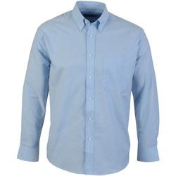 Kleidung Herren Langärmelige Hemden Absolute Apparel  Hellblau
