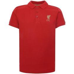 Kleidung Kinder Polohemden Liverpool Fc  Rot