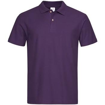 Kleidung Herren Polohemden Stedman  Beeren Lila