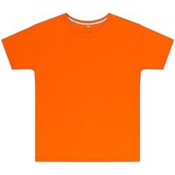 Kleidung Kinder T-Shirts Sg SGTEEK Orange