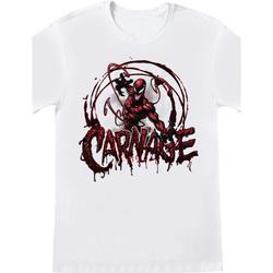 Kleidung T-Shirts Spiderman  Weiß