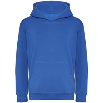 Kleidung Kinder Sweatshirts Awdis J201J Königsblau