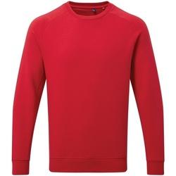 Kleidung Herren Sweatshirts Asquith & Fox AQ078 Multicolor