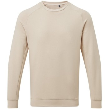 Kleidung Herren Sweatshirts Asquith & Fox AQ078 Natur