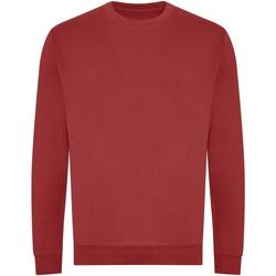 Kleidung Sweatshirts Awdis JH230 Rot